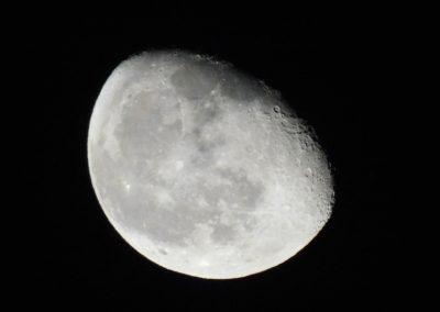 Photo d'une lune de nuit