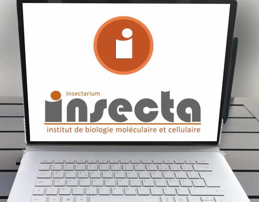 Site Web de l'insectarium de l'IBMC